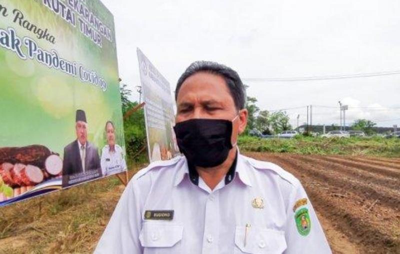 Distan Kutim Ajukan Rp8,8 Miliar untuk Stimulus Petani Terdampak Covid-19